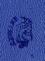 police-blue-sm.jpg